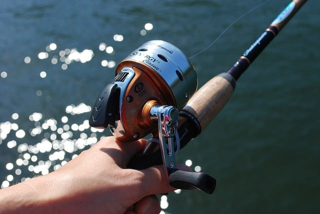 a closed face fishing reel