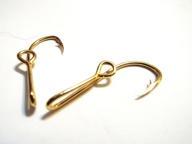 two barbed fish hook